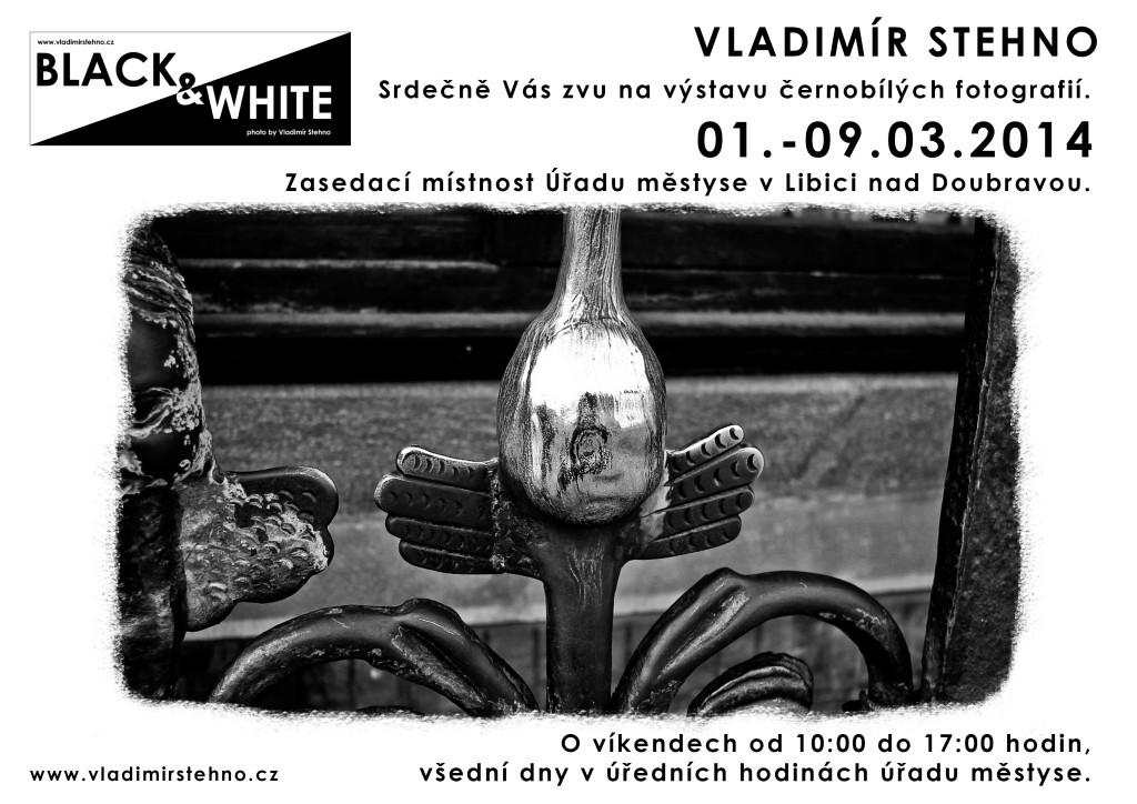 výstava BLACK-WHITE 2014