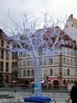 2006_11_13-14-Strasbourg-091