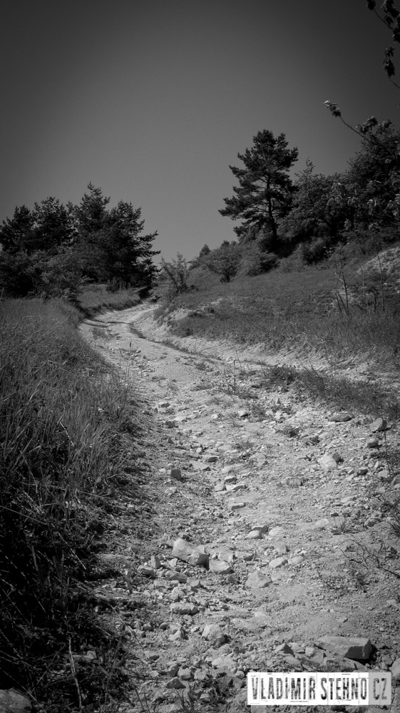 2012_07_21-cesta